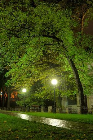 Park view in the night after the rain - HDR photo