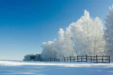 Cold winter day, beautiful hoarfrost and rime on trees Stock Photo