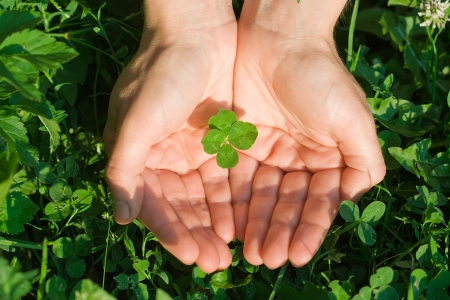 Female hand holding a four leaf clover on the ground photo