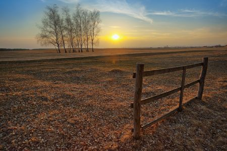 Autumn sunset on the field; a group of trees and a single piece of an old fence Stock Photo - 5183858