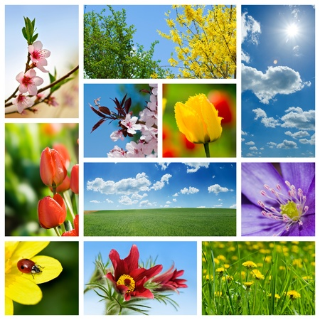 Spring collage representing various season-related flowers and scenics Stock Photo