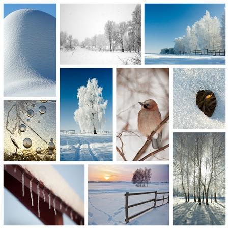 Winter collage representing various season-related nature scenics Stock Photo - 9517459