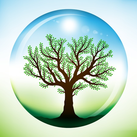 Summer tree with green leaves, growing inside a glass sphere