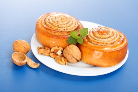 Two cinnamon rolls on white plate, walnut decoration, blue background Stock Photo - 19112009