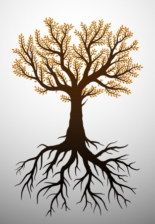 tree roots: Autumn tree illustration with leaves and roots
