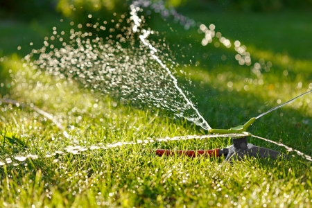 irrigation: Irrigation of green grass with garden sprinkler