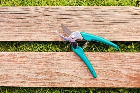 pruner: Pruner on wood board