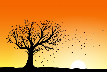 Autumn tree silhouette in sunset, wind blowing away the falling leaves Vector