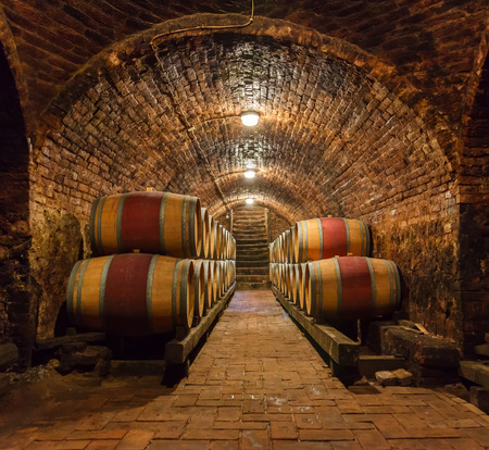 Rows of oak barrels in underground wine cellar Stockfoto