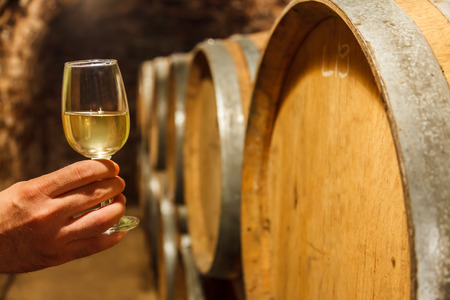 barrels: Hand holding a glass of cold white wine in front of oak barrels