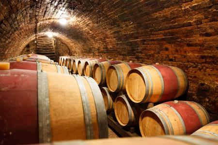 cellar: Rows of oak barrels in underground wine cellar Stock Photo