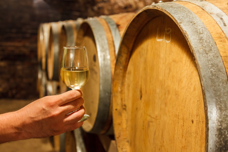 Hand holding a glass of cold white wine in front of oak barrels
