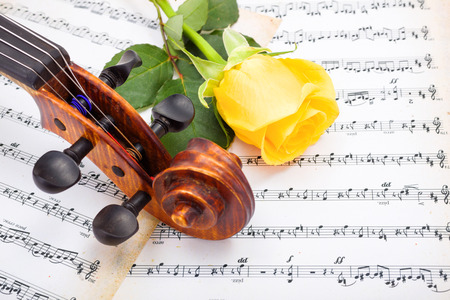 sheet: Close view of violin scroll and yellow rose on musical sheet