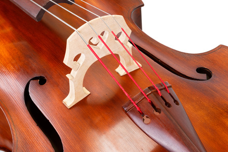 Close view of a bridge and strings on a contrabass Banque d'images