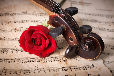 Close view of old violin scroll with red rose on musical sheet