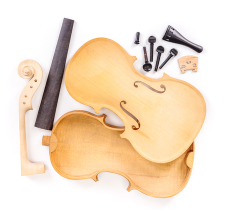 Raw violin parts on white background
