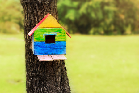 Colorful Birdhouse on Tree in Morning Selective Focus Stock Photo