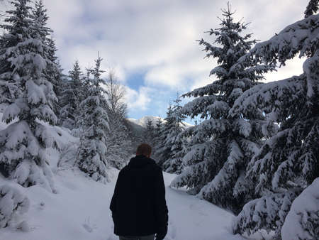 A men going uphill in forest in the middle of winter. Sněžka, Giant Mountains, Czech Republic
