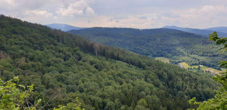 view over mountains and forests in summer