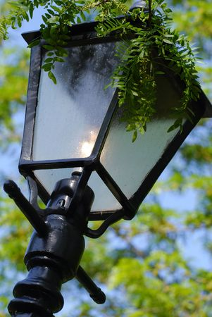 A lamp post in a garden or park, with greenery hanging over the top, and leaves in the background Stock Photo