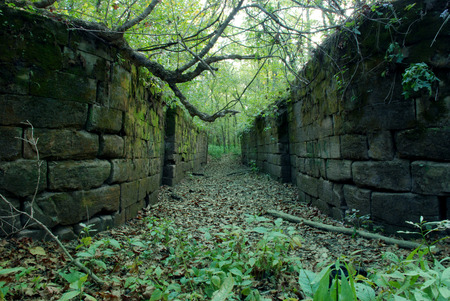 Abandoned Canal Lock  Ohio-Erie Canal