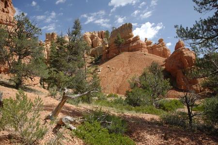 utah: Red Canyon, Utah