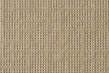 Tan Textured Paper Macro