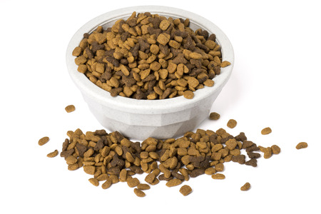 A bowl of dry cat food overflowing with food, isolated on white with shadows.