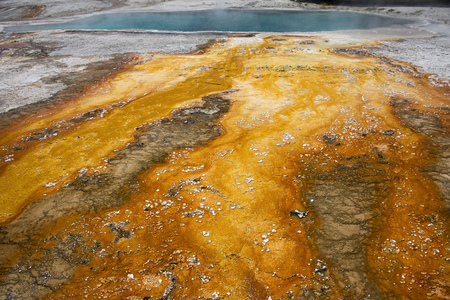 Vibrant colors next to the Black Pool in West Thumb Geyser Basin, Yellowstone National Park
