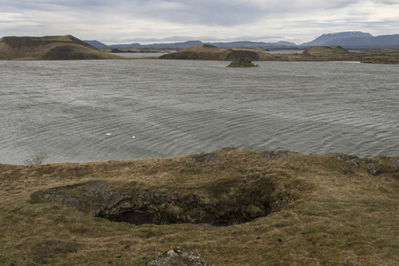 View of Skútustaðagígar, near Myvatn, Iceland with Geese in water