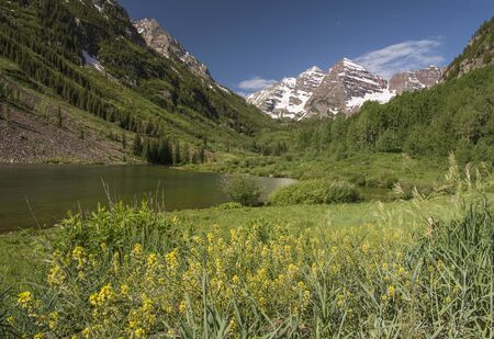View of Maroon Bells, Colorado, USA with some wildflowers in the foreground.