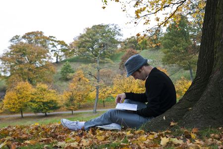 Young man reading under a tree in the park during autumn. Stock Photo