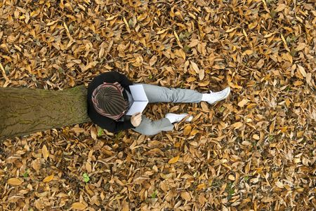 high angle shot: High angle shot of young man reading under a tree on the yellow leaves covered ground.