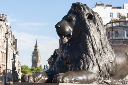 Cropped shot of lion statue in Trafalgar square in central London, UK