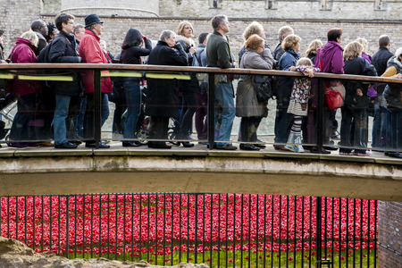 LONDON, UK - NOVEMBER 08: People queueing to see red poppies art installation at Tower of London. November 08, 2014 in London. The ceramic poppies were planted to mark the centenary of WWI Editorial