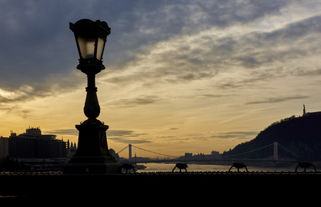 szechenyi: Lamp post in silhouette over Szechenyi Chain Bridge with dramatic sky in the background. Budapest, Hungary. Stock Photo