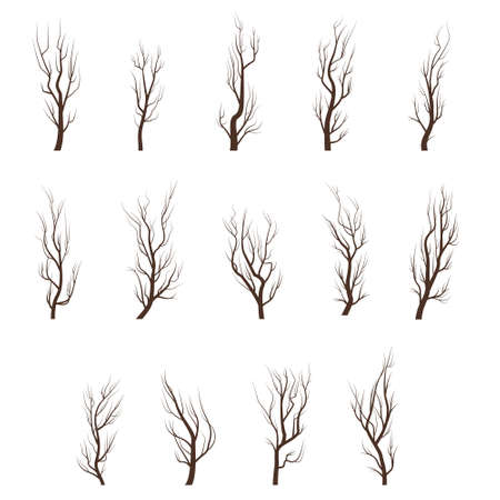 Dry tree branches. Different tree branches set. Çizim