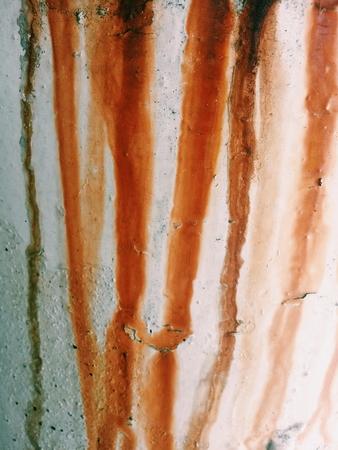 oxidado: oxidado