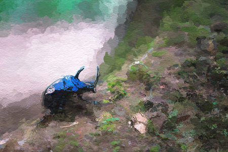generates: Blue scarab on the root of trees in the rainforest. Computer generates oil painting art.