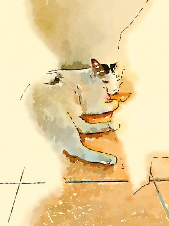 lay down: illustration with a cute cat lay down at the wall in the morning light.