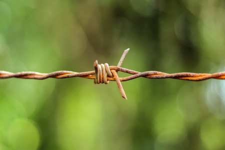 close-up view of rusty barbed wire on green bokeh background.