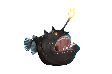 3d rendering front of Anglerfish cartoon style with big mount and giant tooth isolated on white background with clipping paths.