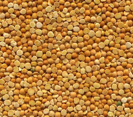 yellow peas grain  photo