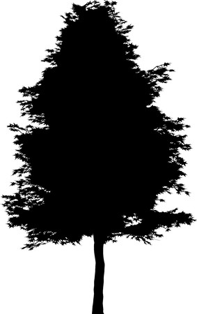 Tree   Stock Vector - 7334363
