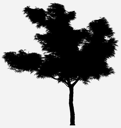 Tree Stock Vector - 7334379