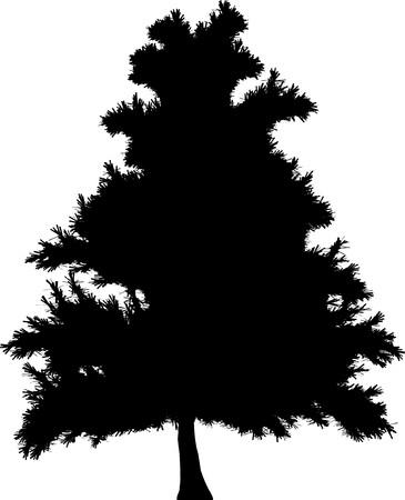 plats: Tree  Illustration