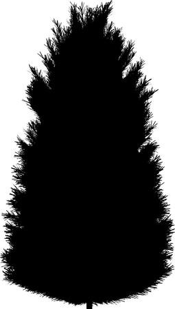 Tree Stock Vector - 7334252