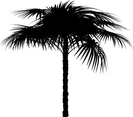 Tree Stock Vector - 7334274