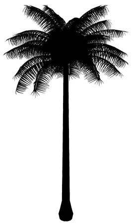 Tree Stock Vector - 7334411