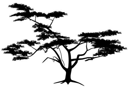 Tree Stock Vector - 7334421
